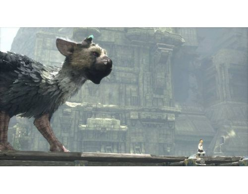 Фото №6 - The Last Guardian Collector's Edition PS4